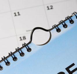 Thumbcut Calendar Hangers